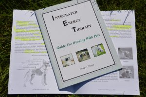 IET pets handboek